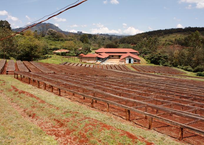 Trocknungsanlage in Kenia