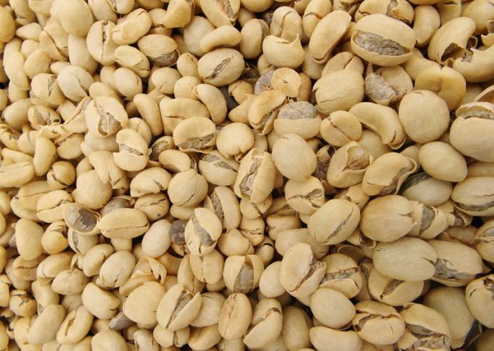Rohkaffee noch in der Pergament Haut